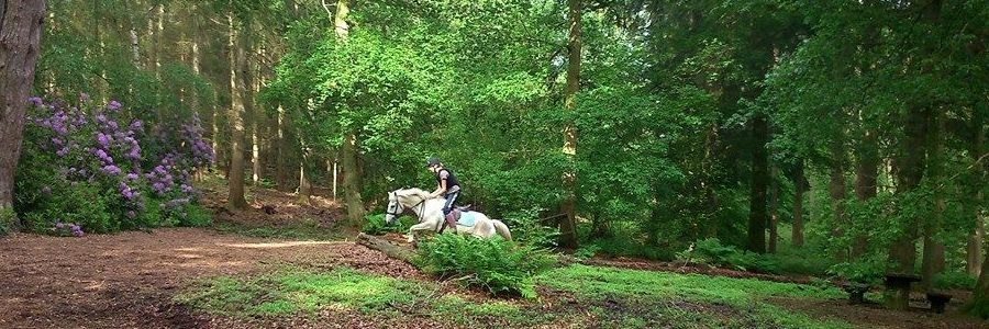 Action shot on Nesscliffe Hill